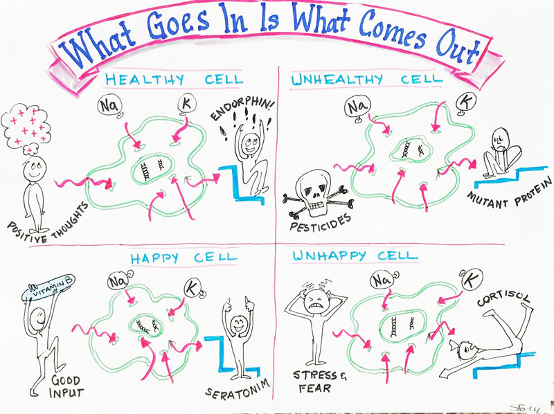 Physiological graphic recording map of how you feel good or bad by Sue Fody of Got It! Learning Designs in Denver, Colorado.